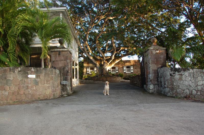 Montpelier Nevis Plantation Beach Hotel 04