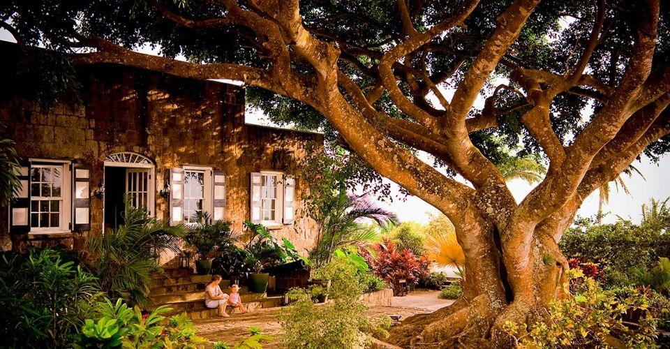 Montpelier Nevis Plantation Beach Hotel